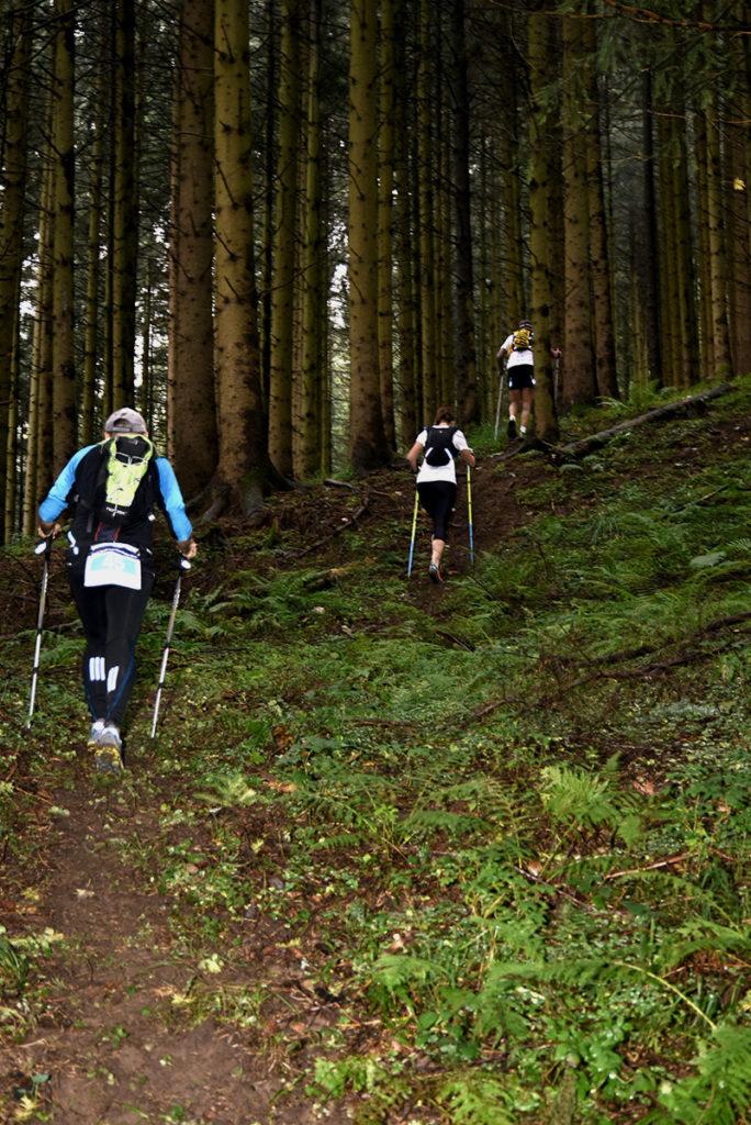 schwarzwald-trail